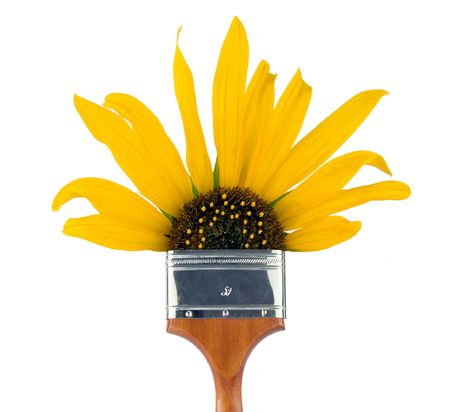 Four inch paintbrush with s sunflower as the bristles. photo