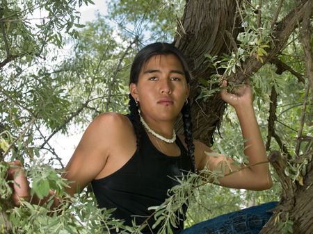Handsome 15 year old Native American boy sitting in a tree Stock Photo - 5825962