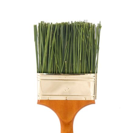 non: Nontoxic paint concept - green grass as bristles in a four inch paintbrush.