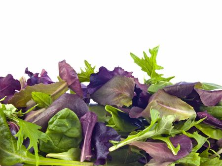 Mixed baby greens isolated on white photo