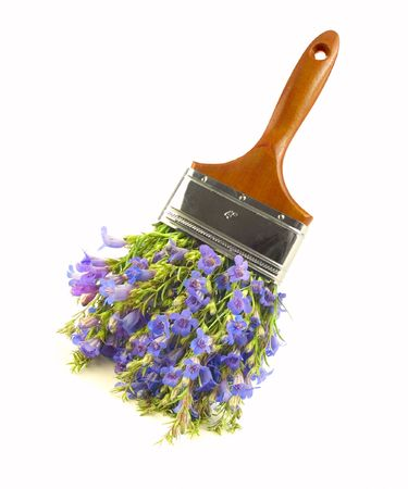 Wildflower paintbrush - non-toxic paint concept