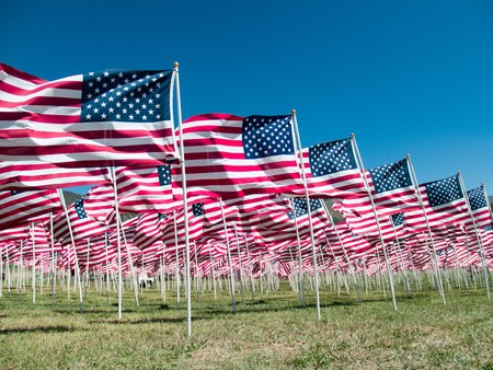 Amerikaanse vlaggen, een gedenk teken voor de oorlog in Vietnam veteranen in Questa, NM
