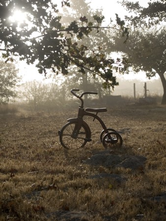 Antique tricycle in autumn fog and sunrise Stock Photo