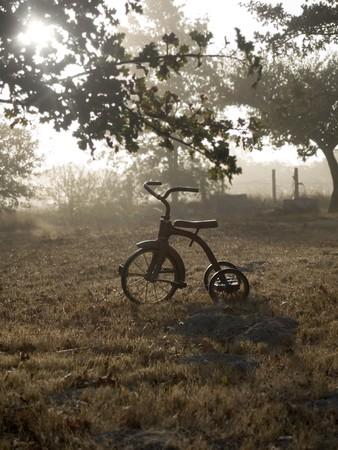 Antique tricycle in autumn fog and sunrise Stock fotó