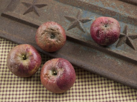 mockery: Conceptual political mockery - rotten apples on Gingham cloth next to a rusty cast iron panel decorated with Texas stars