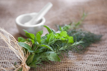 Fresh herbs tied to a bundle on burlap with a mortar & pertle in the background. Very shallow DOF, front spearmint leaves are the focus point.