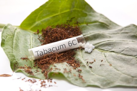 Tabacum homeoptahic medicine on a small tobacco leaf with cured &, cut tobacco. Stock Photo