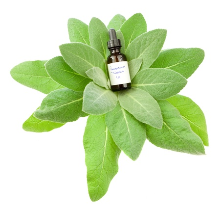 Verbascum Thapsus homeopathic medicine with a mullein plant isolated on white. Label text is not a brand name or trademark, but Latin name for the medicine, 1X is the strength of the dose.