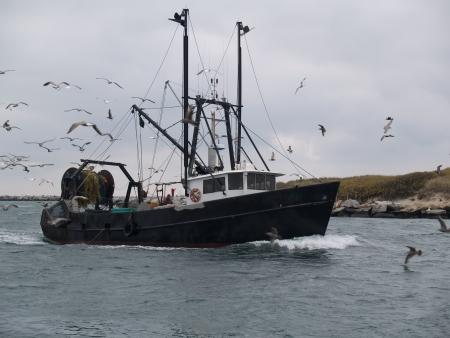 barca da pesca: Barca da pesca sportiva ritorno al porto commerciale Archivio Fotografico