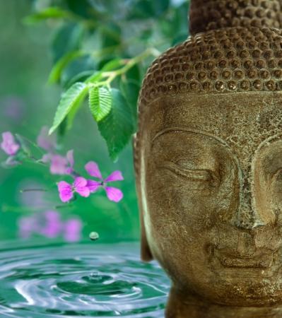 Het gezicht van Boedha met groene bladeren, bloemen en water op de achtergrond