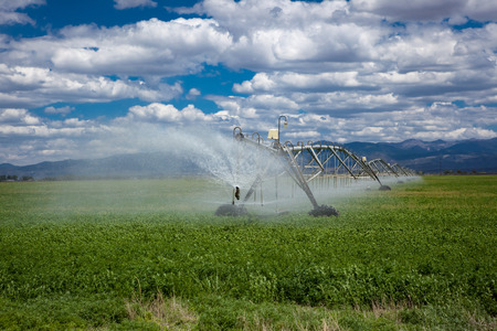 pumping: Center pivot agricultural irrigation system in an alfalfa field