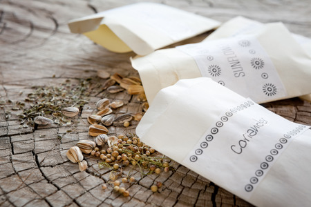 Seed packets and seeds. Focus on coriander and sunflower seeds, dill seeds further back.