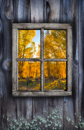 Fall window design of weathered wood and colorful foliage Stock Photo
