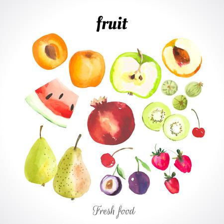 Aquarel illustratie van een schildertechniek. Verse biologische voeding. Set van verschillende vruchten en bessen: abrikoos, perzik, watermeloen, pruimen, aardbeien, kersen, kiwi, appel, granaatappel en peer.