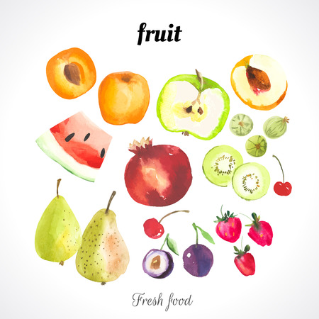 Watercolor illustration of a painting technique. Fresh organic food. Set of different fruits and berries: apricot, peach, watermelon, plums, strawberries, cherries, kiwi, apple, pomegranate and pear.
