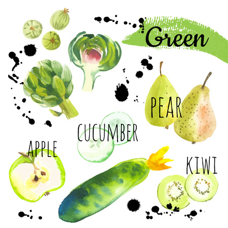 Fresh organic food. Set of different fruits, vegetables and berries: gooseberry, pear, artichoke, apple, kiwi & cucumber. Simple painting sketch in vector format. Green set.