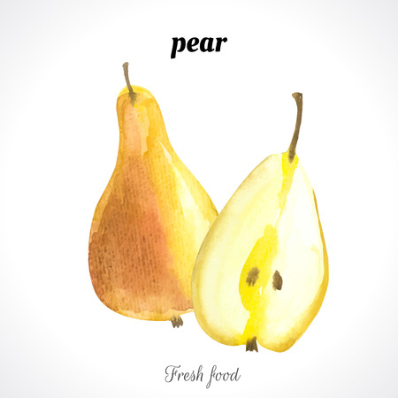 recent: Watercolor pear. Provencal style. Recent watercolor paintings of organic food. Fresh fruit.