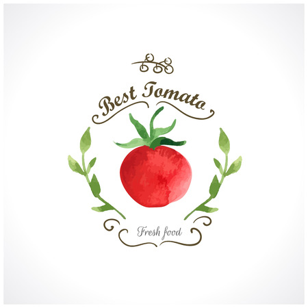 Watercolor vegetables. Tomatoes. Provencal style. Recent watercolor paintings of organic food. Etiquette with tomato
