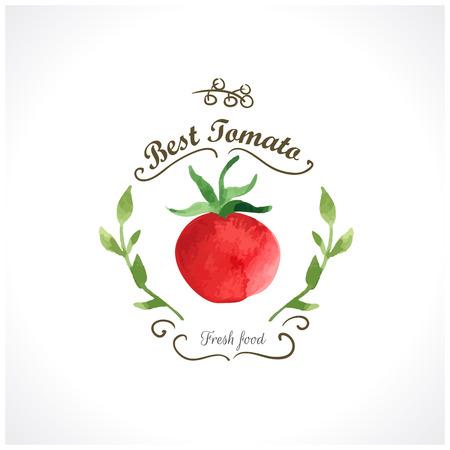 jitomates: Verduras de la acuarela. Tomates. Estilo provenzal. Acuarelas recientes de los alimentos ecol�gicos. Etiqueta con tomate Vectores