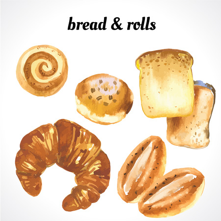 croissants: Vector illustration of muffins and bread. Watercolor illustration of fresh organic pastries. Croissants and donuts. Illustration