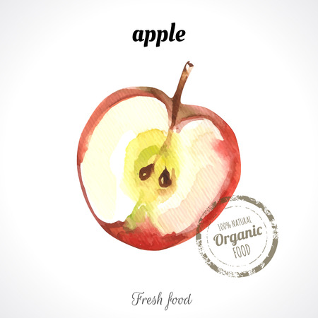 Watercolor apple. Provencal style. Recent watercolor paintings of organic food. Fresh fruit.