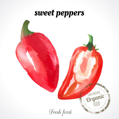sectional: Watercolor fresh red pepper. Provencal style. Recent watercolor paintings of organic food.