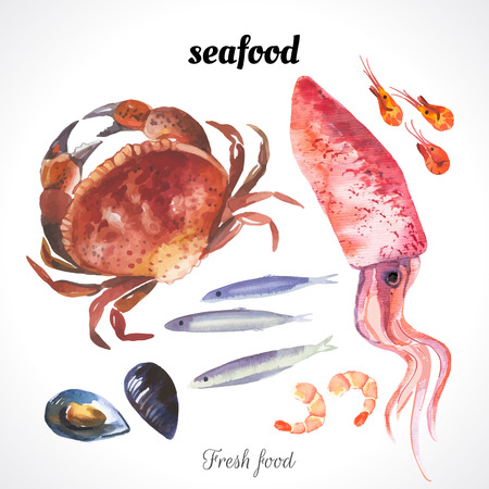 Watercolor illustration of a painting technique. Fresh organic food. Watercolor set of sea food with squid, crab, anchovies, shrimp and mussels drawn by hand on a white background. Vettoriali