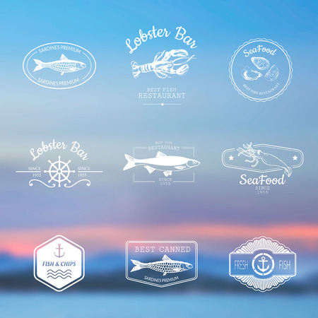 delicacy: Logo set for fish restaurant or bar with a picture of the fish on blurred background of the sky and the sea.