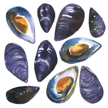 Watercolor set mussels drawn by hand on a white background. Picturesque shellfish.
