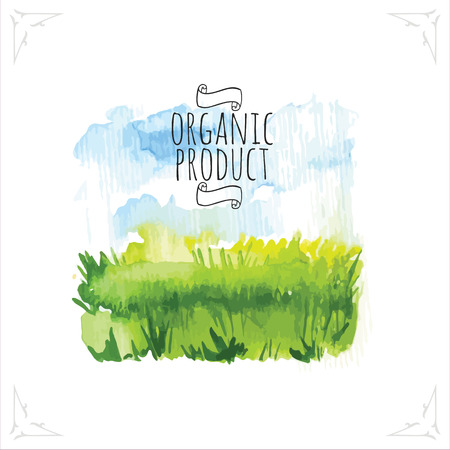 field and sky: Organic farms. Watercolor illustration pshenicheono field with the sky. Vector illustration of nature. Illustration
