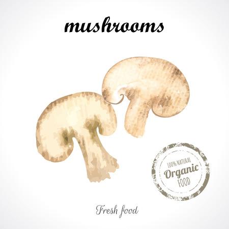 splitting: Watercolor mushrooms. Provencal style. Recent watercolor paintings of organic food. Veggie menu. Splitting