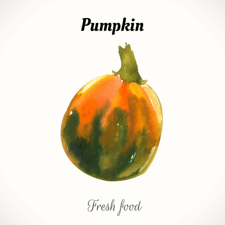 contemporary taste: Watercolor orange pumpkin. Halloween style. Recent watercolor paintings of organic food. Veggie menu. For the autumn holidays. Ripe vegetables