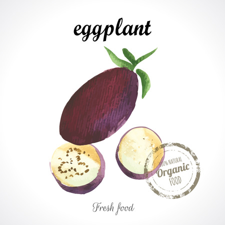 recent: Watercolor eggplant. Provencal style. Recent watercolor paintings of organic food. Veggie menu