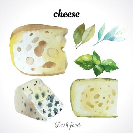 queso blanco: Ilustración de la acuarela de una técnica de pintura. Los alimentos frescos orgánicos. Conjunto de diversos quesos nobles. Bar queso azul.