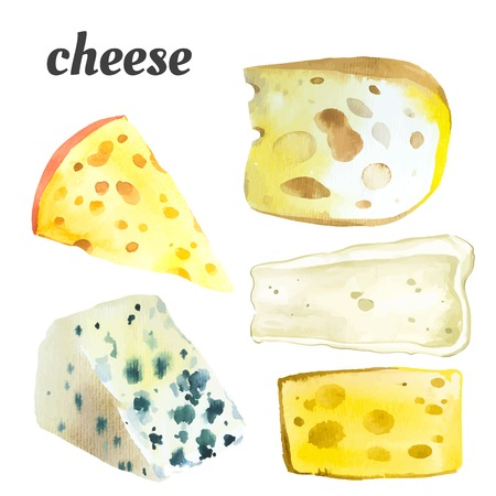 Watercolor illustration of a painting technique. Fresh organic food. Set of different noble cheeses. Bar of cheese.