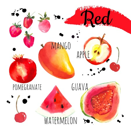 Set of different fruits and berries: guava, apple, watermelon, mango, cherries, strawberries, pomegranate. Simple painting sketch in vector format. Red set.