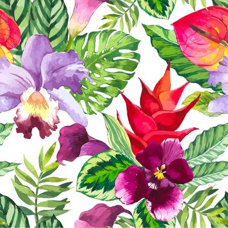 orchidee: Bellissimo sfondo trasparente con fiori tropicali e piante su bianco. Composizione con Calla, orchidee, anthurium e Monstera foglie.