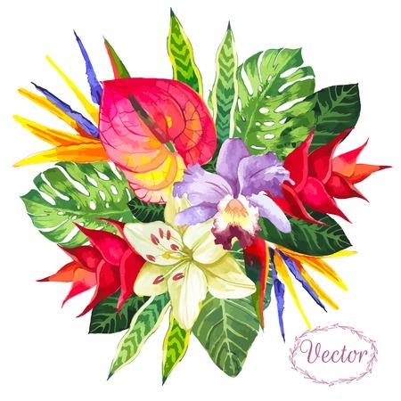 Hermoso ramo de flores y plantas tropicales sobre fondo blanco. Composición con monstera y hojas de palma, orquídea lirio blanco y anturio. Hola Verano.