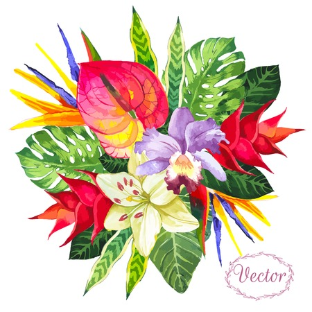 Beautiful bouquet tropical flowers and plants on white background. Composition with monstera and palm leaves, white lily orchid and anthurium. Hello summer.