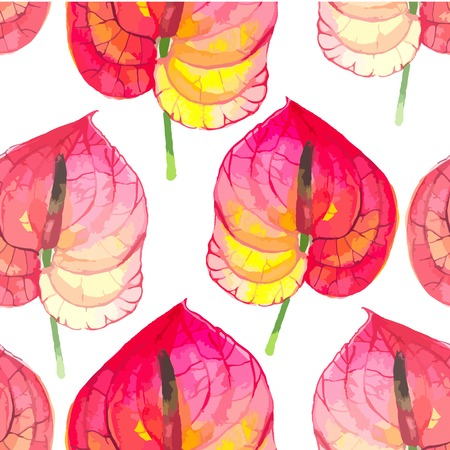 anthurium: Watercolor seamless background with tropical flowers on white. Floral ornament with wildflowers for your design and decor.