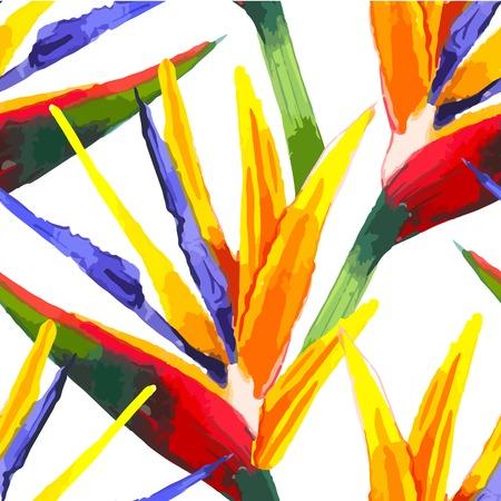 Acquerello sfondo trasparente con fiori tropicali su bianco. Ornamento floreale con fiori per il vostro design e arredamento. Archivio Fotografico - 44309177