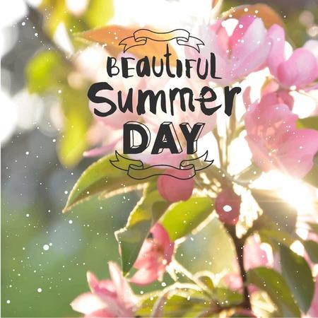 penetrating: Sunlight penetrating flowering tree. Beautiful summer day.