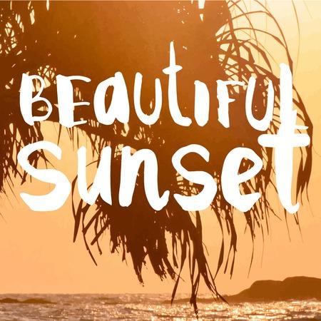 siervo: Verano puesta de sol junto al mar. Hermosa puesta de sol con siluetas de palmeras.
