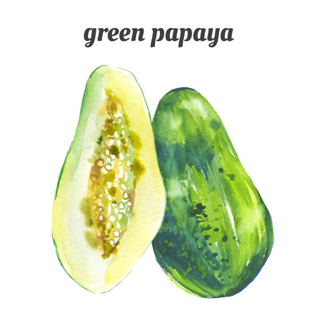 papaya: Illustration with watercolor fruit. Watercolor illustration of a painting technique.