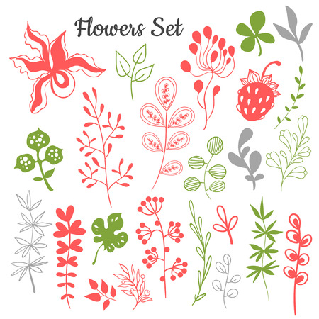 handdraw: Flowers and leaves trendy set. Set of hand-draw elements. Illustration