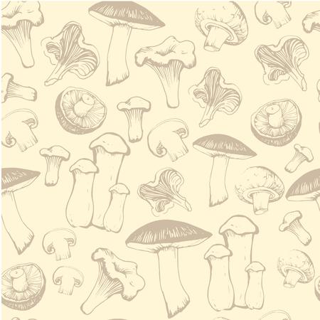 shiitake: Sketch of mushrooms on light orange background. Fresh organic food.
