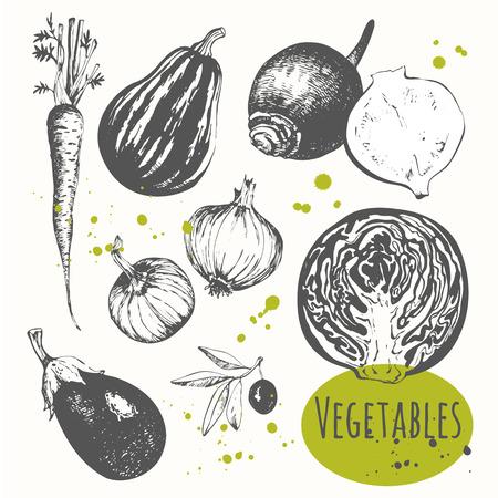 legumes: Aliments biologiques frais. Vector illustration avec des l�gumes esquisse. Croquis noir et blanc de la nourriture.