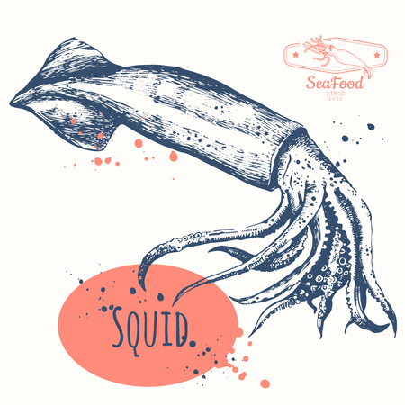 Vector illustration on white background with fresh organic seafood.