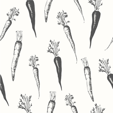 carrot isolated: Fresh organic food. Carrots background. Black and white.