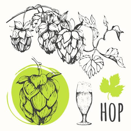 hop hops: Black and white. Sketch design. Beer set.